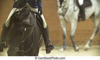 Riders on the horses in the equestrian arena, slow-motion