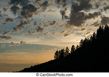 Ridgeline - Trees and clouds in early morning, Steptoe Butte...
