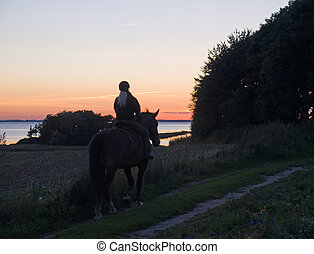 Riding a horse in the sunset