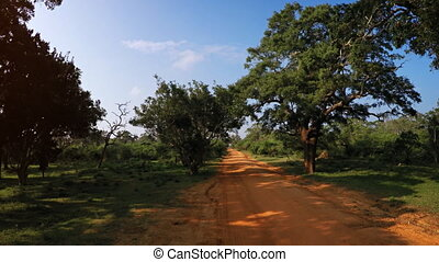 Riding along a Red Dirt Road in Sri Lanka