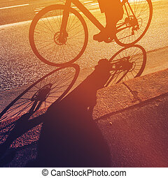 Riding bicycle, shadow of unrecognizable person on a bike