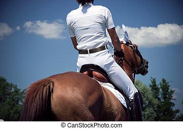 riding dressage