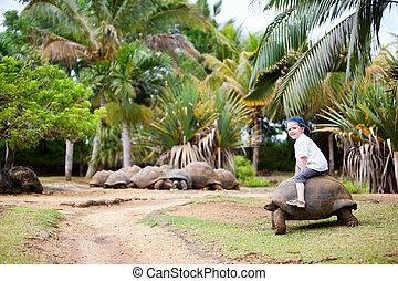 Riding Giant Turtle