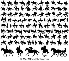 riding horses collection