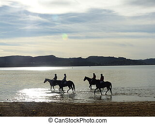 Riding horses in the beach