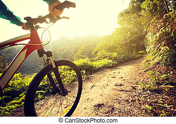 riding mountain bike at sunrise forest trail