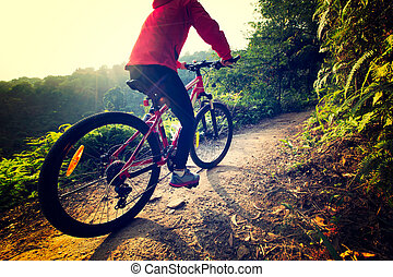 riding mountain bike on sunrise forest trial