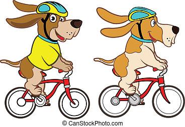 ridning cykel, hund