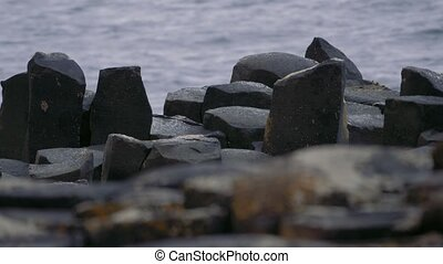 riesig, damm, basalt, spalten, nordirland, -, eingestuft,...
