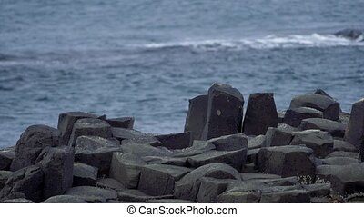 riesig, damm, closeup, nordirland