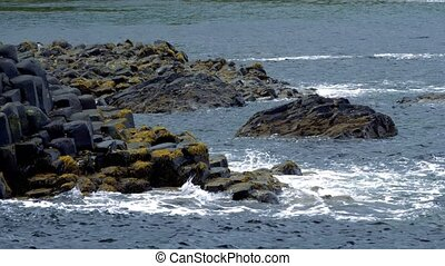 riesig, damm, nordirland, closeup