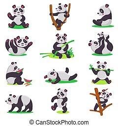 riesig, satz, essende, bambus, chinesisches , oder, zeichen, freigestellt, bär, spielende , bearcat, vektor, abbildung, hintergrund, kind, weißes, panda, karikatur, kind