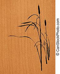 riet, achtergrond, hout
