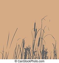 riet, vector, silhouette, illustratie, bush.