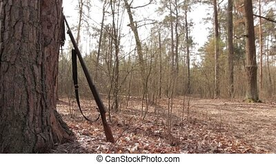 Rifle in Forest, smooth movement - Ancient rifle under the...