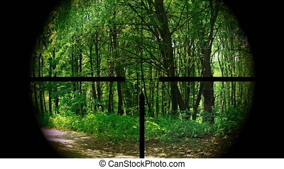 Peeping through a rifle scope at the woods and trees along a country road, with bird sounds. 1080p Full HD footage