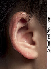 right ear of a man