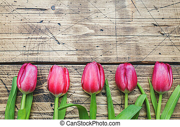 right pink purple tulips on wooden background with copy space.