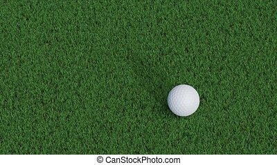 Right to left straight move of a golf ball on a well cutted...