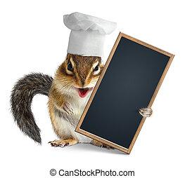Rigolote balai tenue cureuil ray nettoyeur tenue for Cuisinier chapeau noir