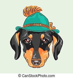 rigolote, chien, dessin animé, vecteur, hipster, teckel