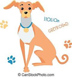 rigolote, croquis, séance, lévrier, chien, vecteur, italien