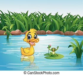 rigolote, dessin animé, grenouille, canard