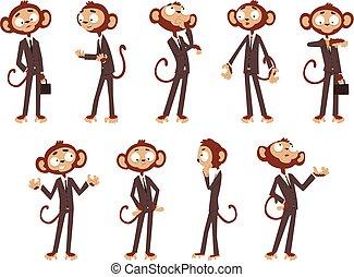 rigolote, différent, singe, habillé, humain, caractère, illustration, fond, complet, vecteur, animal, homme affaires, blanc, poses, dessin animé