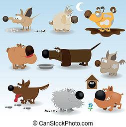 rigolote, ensemble, chiens