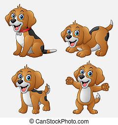 rigolote, ensemble, dessin animé, collection, chiens
