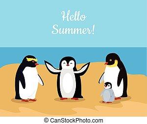 rigolote, famille, pingouins, empereur, summer., bonjour