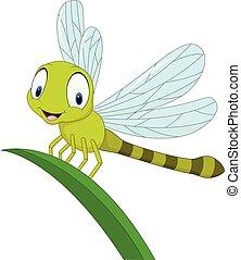 rigolote, feuille, dessin animé, libellule