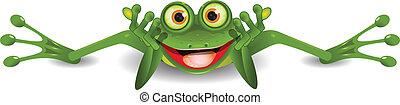rigolote, grenouille, est, sur, sien, estomac