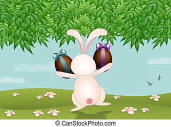 Oeufs paques poule chocolat oeufs paques poule - Image rigolote de paques ...
