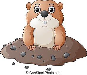 rigolote, marmotte amérique, dessin animé