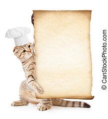rigolote, menu, chat, chef cuistot, tenue, chapeau, parchemin