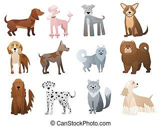 rigolote, mignon, chouchou, set., chiens, vecteur, caractères, chiot, dessin animé
