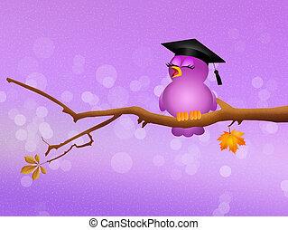rigolote, oiseau, diplômé