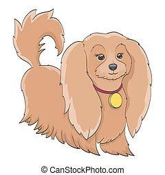 rigolote, peu, chouchou, à poil, chien, isolé, white., dessin animé