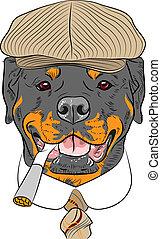 rigolote, rottweiler, chien, vecteur, hipster, dessin animé