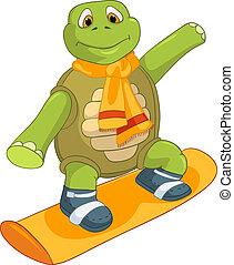 rigolote, turtle., snowboarding.