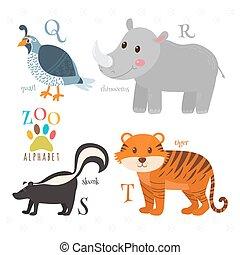 rigolote, zoo, alphabet, s, tigre, letters., sconse, t, rhinocéros, r, dessin animé, animals., q, caille