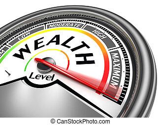 rijkdom, niveau, conceptueel, meter