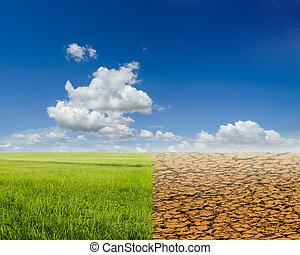 rijst veld, en, ecologie, landscape