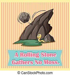 rimbombante, pietra, raggruppa, muschio, no