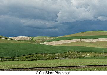 rimbombante, verde, fattoria, campi, con, arrabbiato, tempesta
