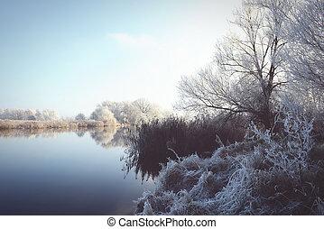 rime frost landscape at Havel river (Brandenburg - Germany)