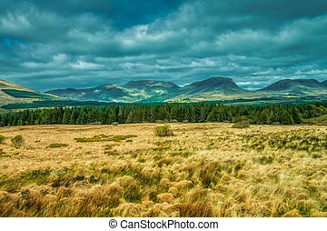 Grassland and mountains along the Ring of Kerry road, Killarney National Park, Ireland
