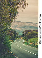 Road through the Ring of Kerry, Ireland