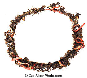 ring out of the earth and worms on a white background